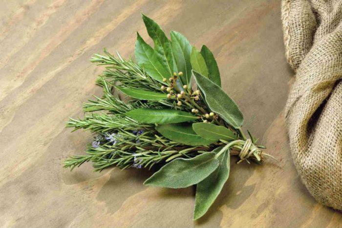 ritual con hojas de laurel para el dinero