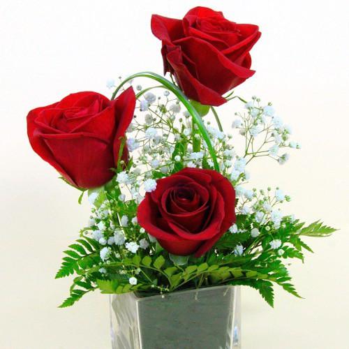 amarres de amor efectivos y rapidos con rosas rojas